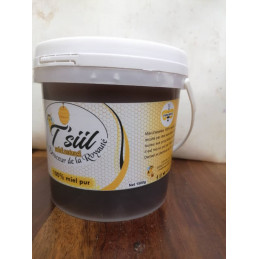 Miel T'SIIL- 750 g