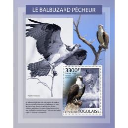 BALBUZARD PECHEUR